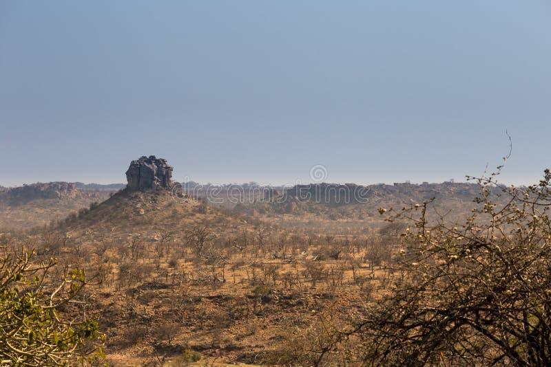 Ландшафт пустыни национального парка Mapungubwe, Южной Африки стоковое фото
