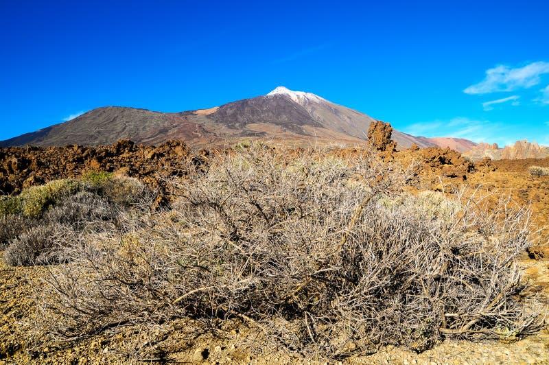 Download Ландшафт пустыни стоковое фото. изображение насчитывающей засуха - 37926736