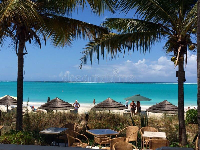 Ландшафт пляжа с пальмами, открытым морем аквамарина и древним белым песком стоковые фото