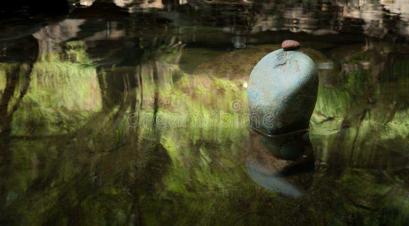 Ландшафт раздумья Дзэн Спокойная и духовная окружающая среда природы стоковое фото rf