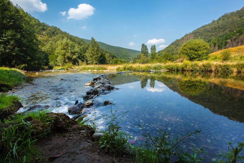 Ландшафт реки в лете стоковое изображение rf