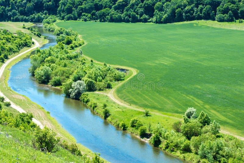Ландшафт реки и зеленого пшеничного поля стоковое фото rf