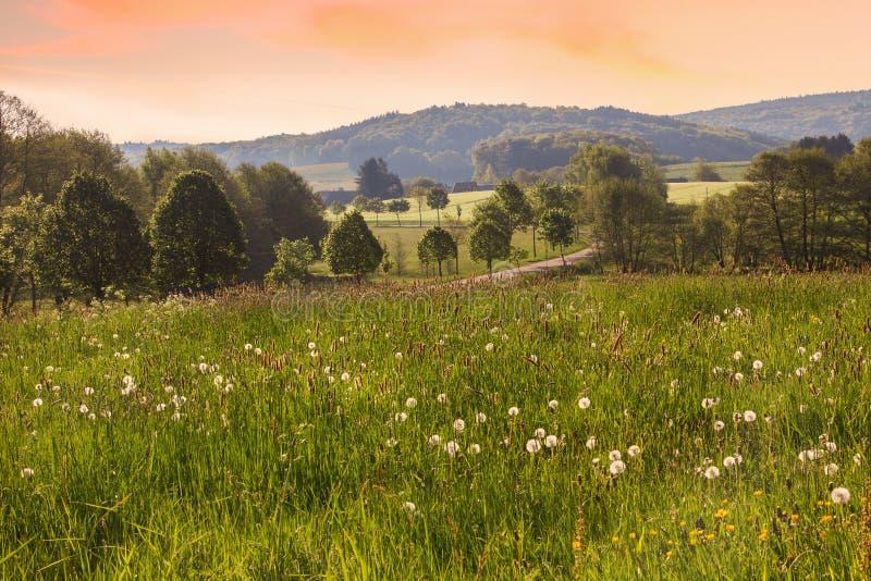 Ландшафт Саара в утре стоковое изображение rf
