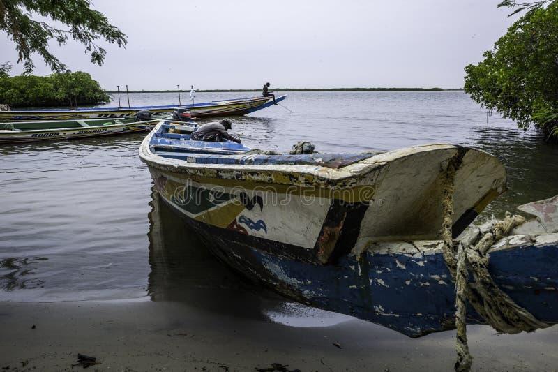 Ландшафт Сенегала стоковая фотография