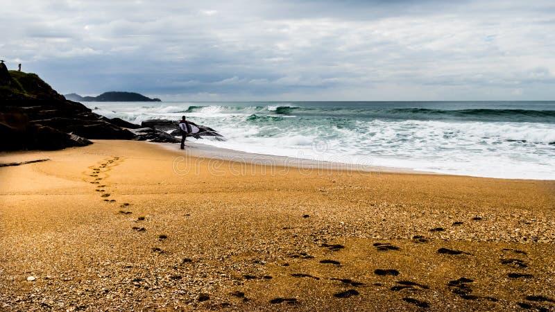 Ландшафт серфера смотря океан стоковая фотография rf