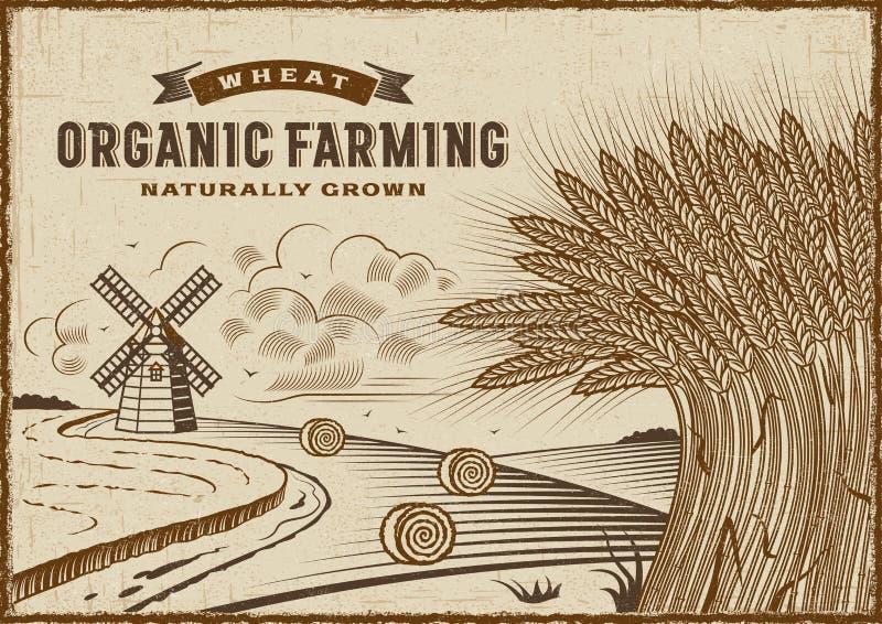 Ландшафт сельского хозяйства пшеницы органический бесплатная иллюстрация