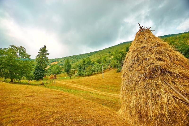 Ландшафт сельской местности стога сена стоковое фото