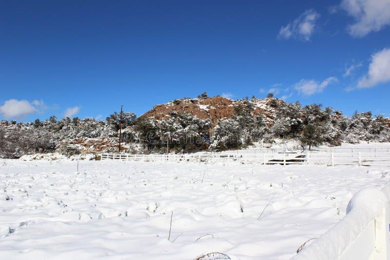 Ландшафт снега & горы стоковые изображения rf