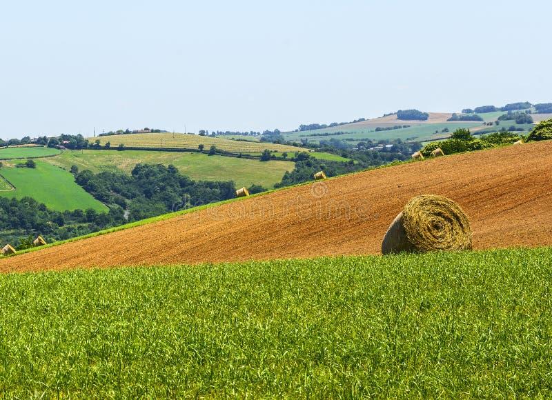 Ландшафт страны в Тарне (Франция) стоковое изображение rf
