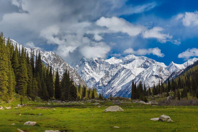 Ландшафт с горами, Кыргызстан стоковые изображения rf