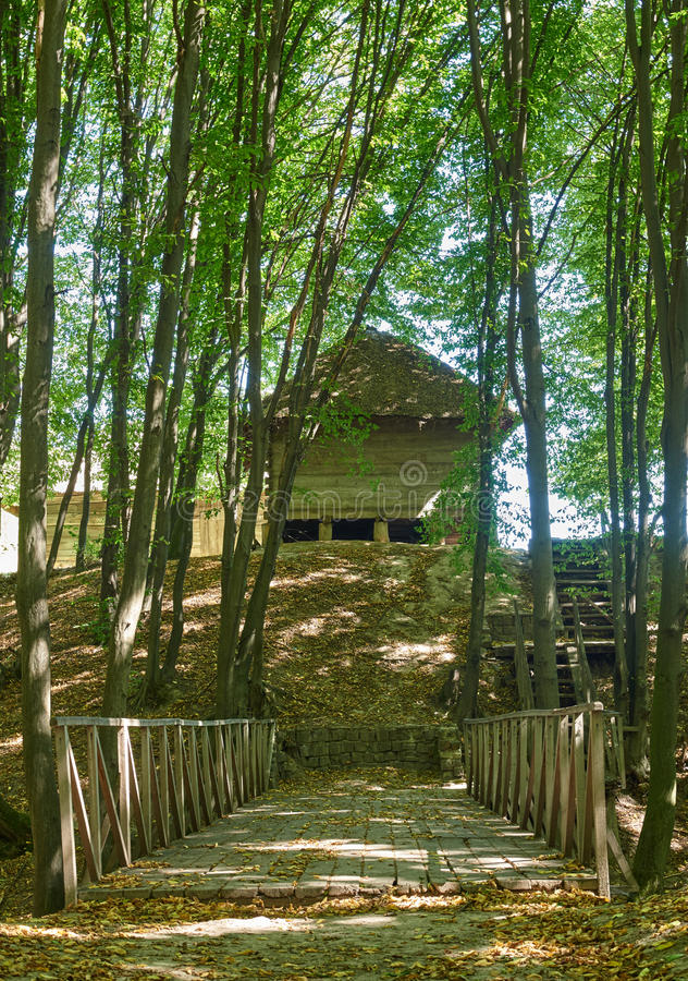 Ландшафт с деревянным мостом через промоину в лесе стоковое фото