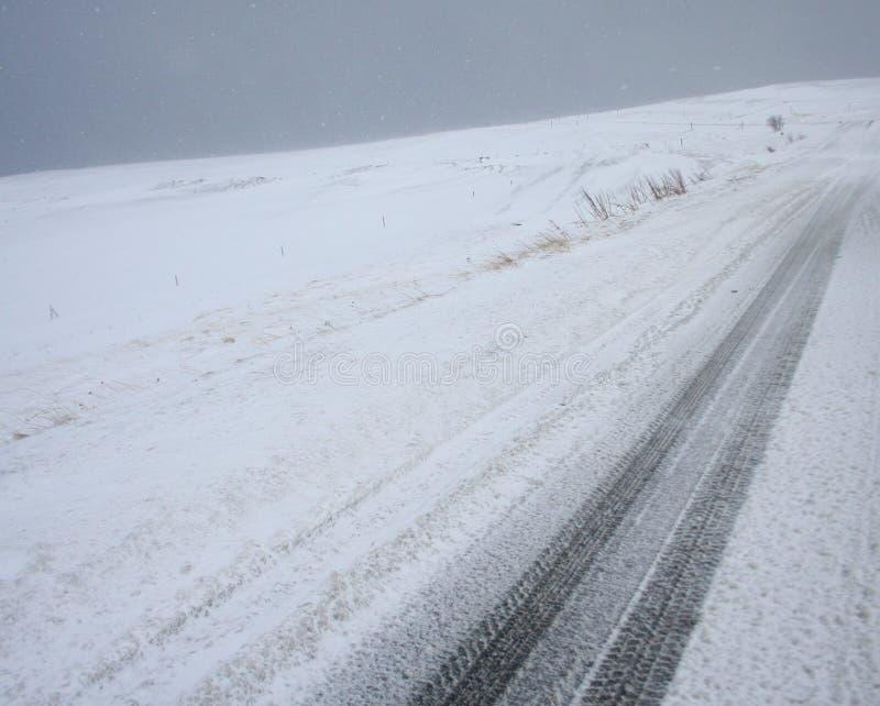 Ландшафт #2 следов автомобиля снежка стоковые изображения