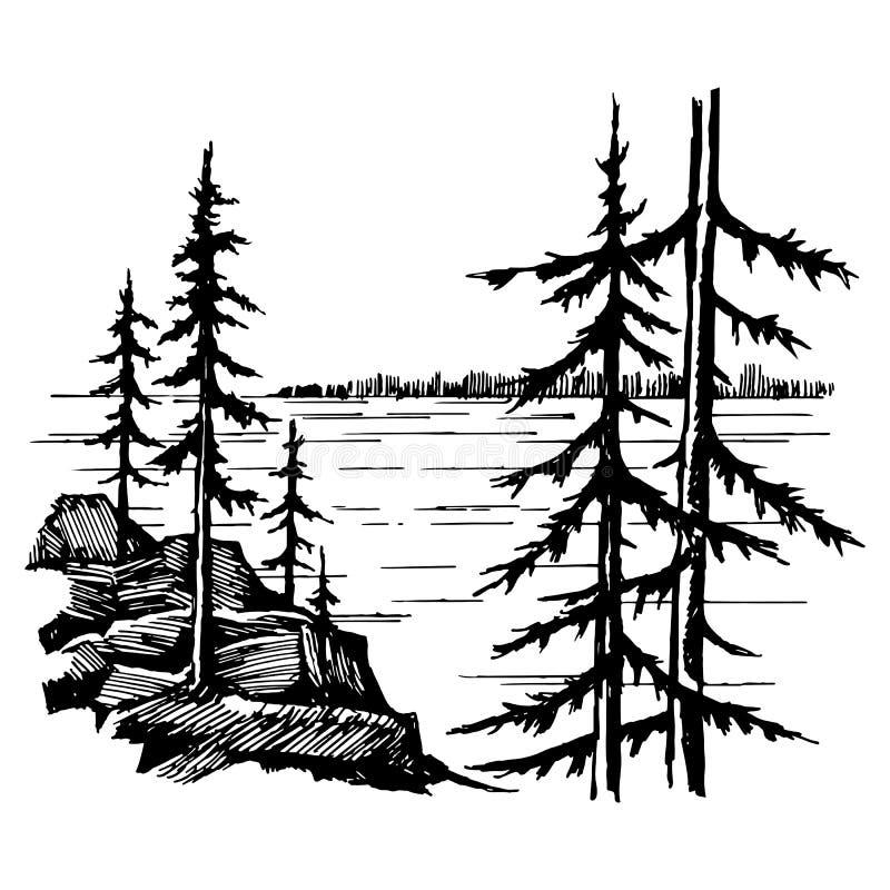 Ландшафт с передними частями озера и спруса бесплатная иллюстрация