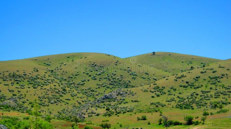 Ландшафт с полями и лугами в Турции стоковая фотография