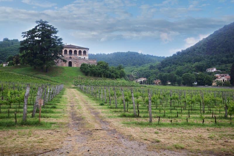 Ландшафт тосканских холмов стоковое изображение rf