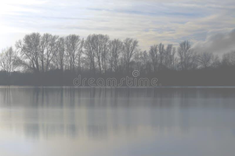 Ландшафт тумана зимы стоковая фотография
