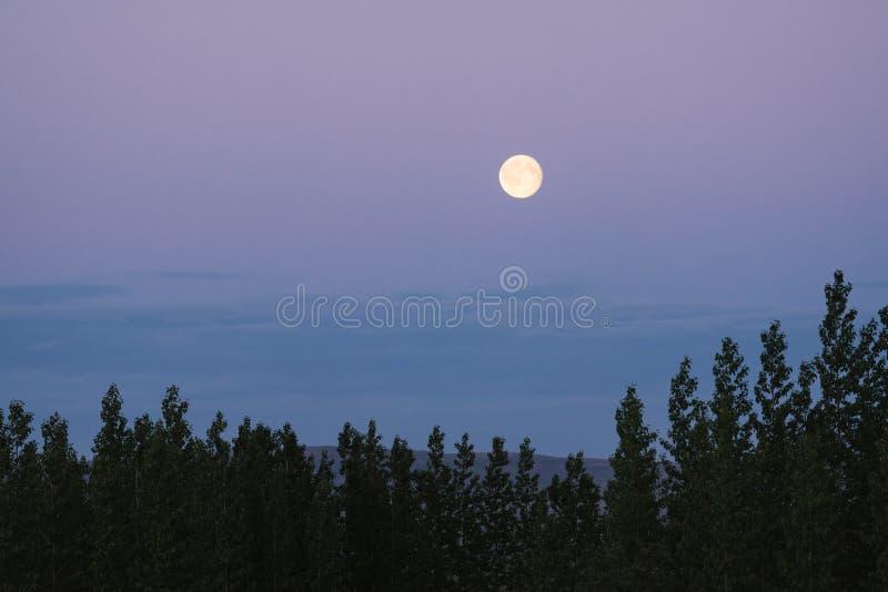 Ландшафт утра с полнолунием стоковые фотографии rf