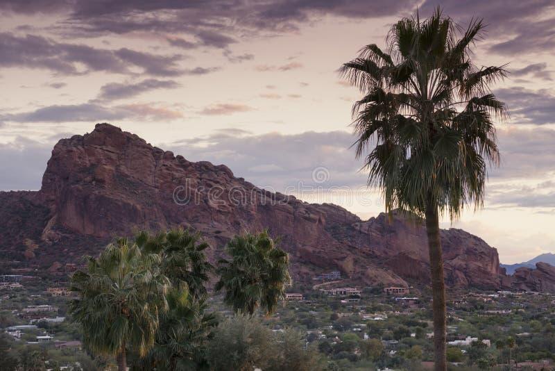 Ландшафт Феникс пустыни, Аризона, США стоковое изображение
