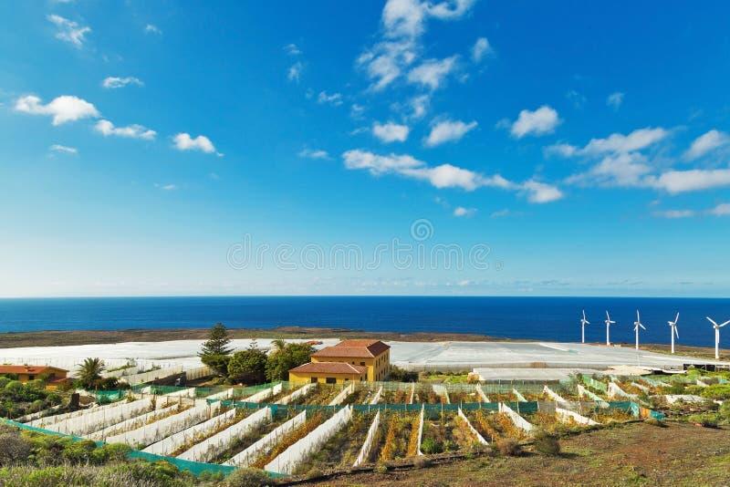 Ландшафт фермы с ветротурбинами стоковые изображения