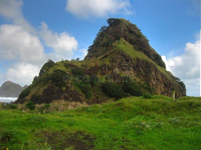 Холм Новой Зеландии большой стоковое изображение