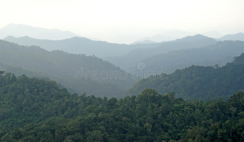 Ландшафт холмов туманной горы, слои гор стоковое изображение
