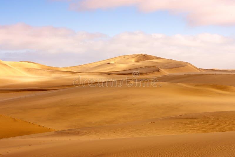 Ландшафт дюны пустыни Namib стоковая фотография