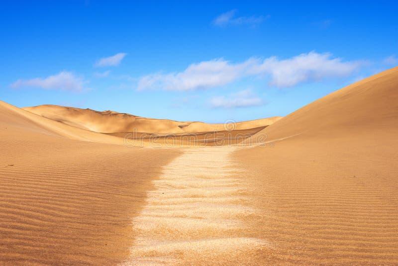 Ландшафт дюны пустыни Namib стоковое фото