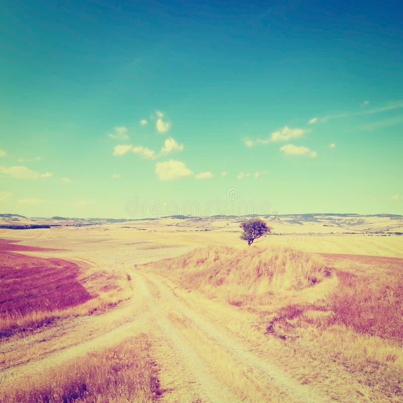 Download Ландшафт стоковое фото. изображение насчитывающей италия - 41658066