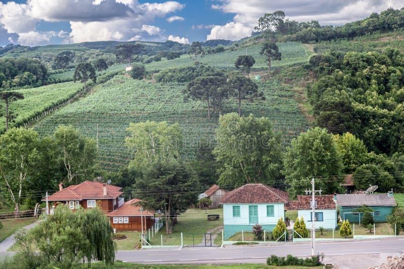 Ландшафт Caminhos de Pedra Бразилия стоковое изображение