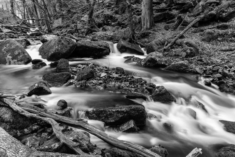 Ландшафт Dartmoor черно-белый стоковое фото rf