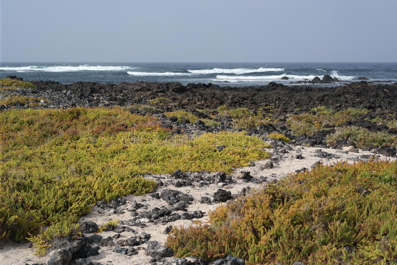 Ландшафт Orzola, Лансароте, остров canarias стоковое фото rf