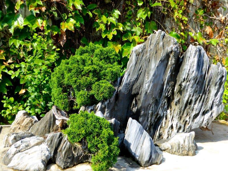 Ландшафт Rockery стоковая фотография rf