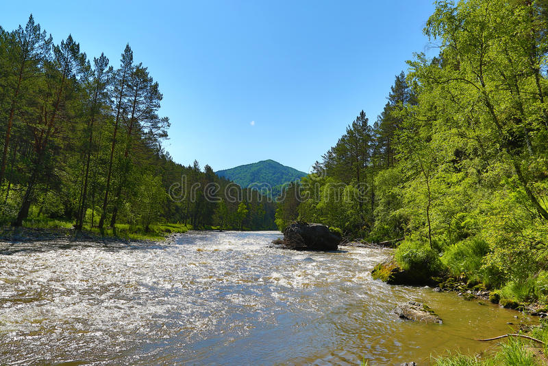 Ландшафт Sema реки горы в Altai стоковые изображения