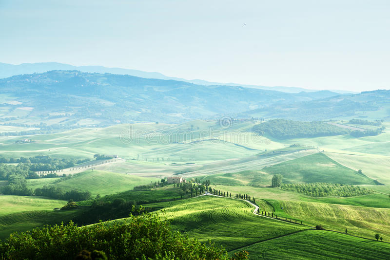 Ландшафт sprig Тосканы стоковая фотография rf