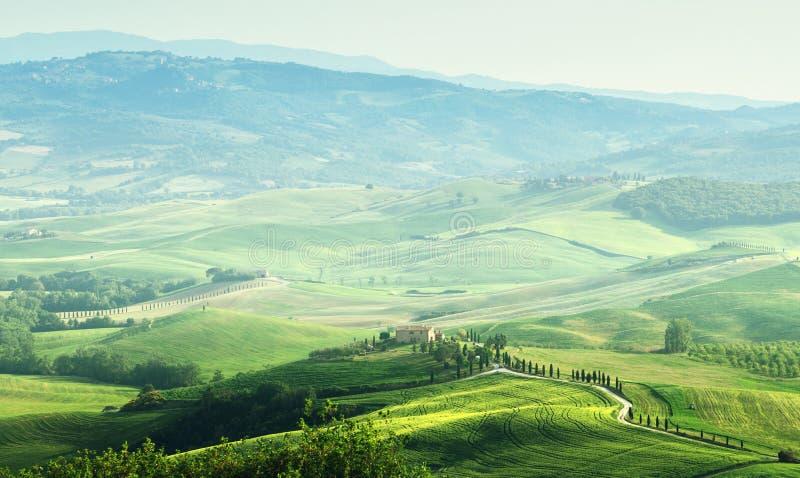 Ландшафт sprig Тосканы стоковое изображение