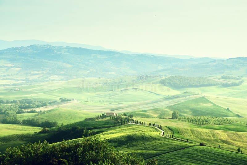 Ландшафт sprig Тосканы стоковые изображения