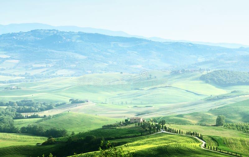 Ландшафт sprig Тосканы стоковое изображение rf
