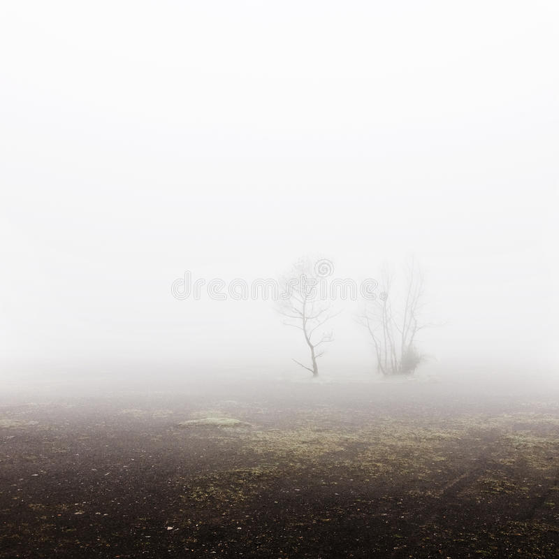 Ландшафт Terril стоковая фотография