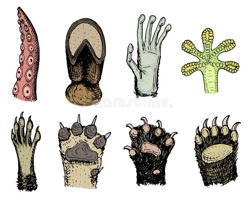 Лапки животных или следов ноги и живой природы Твари птицы и моря, руки обезьяны и собаки, медведь и лягушка, щупальца  иллюстрация штока