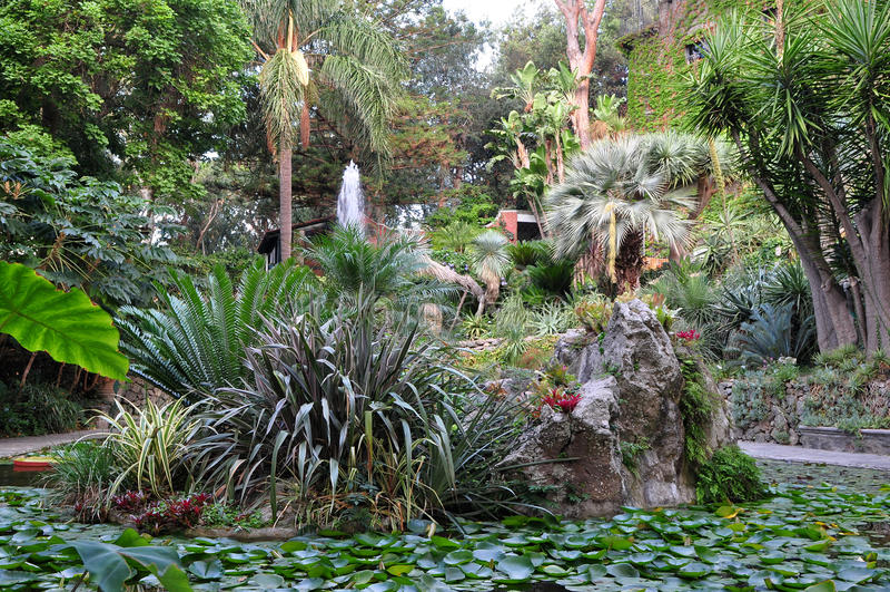 Ла Mortella ботанического сада, Ischia, Италия стоковые изображения