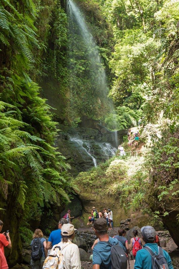 ЛА PALMA `, КАНАРСКИЕ ОСТРОВА, ИСПАНИЯ - 13-ОЕ АВГУСТА 2017: люди восхищая водопад леса Лос Tilos, запаса биосферы стоковое изображение