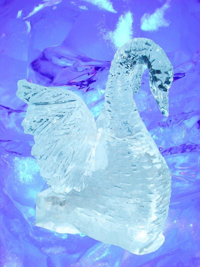 лебедь скульптуры льда стоковое изображение rf