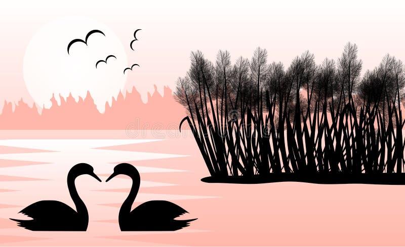 2 лебедя в озере с тростниками в ландшафте восхода солнца плоском иллюстрация вектора