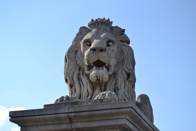 Download Лев Будапешта стоковое изображение. изображение насчитывающей bucking - 40580795