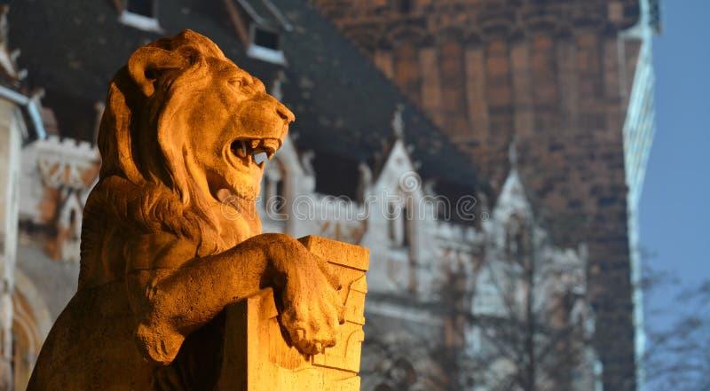 Лев защищая замок стоковое фото rf