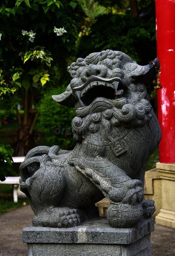 Лев с запертыми зубами стоковые изображения