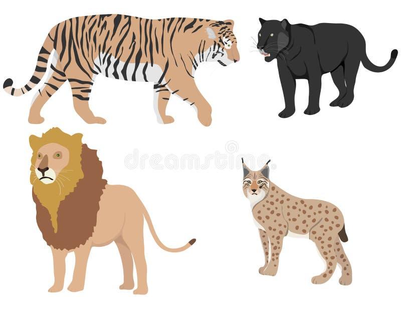 Лев, тигр, пантера, рысь хищники бесплатная иллюстрация