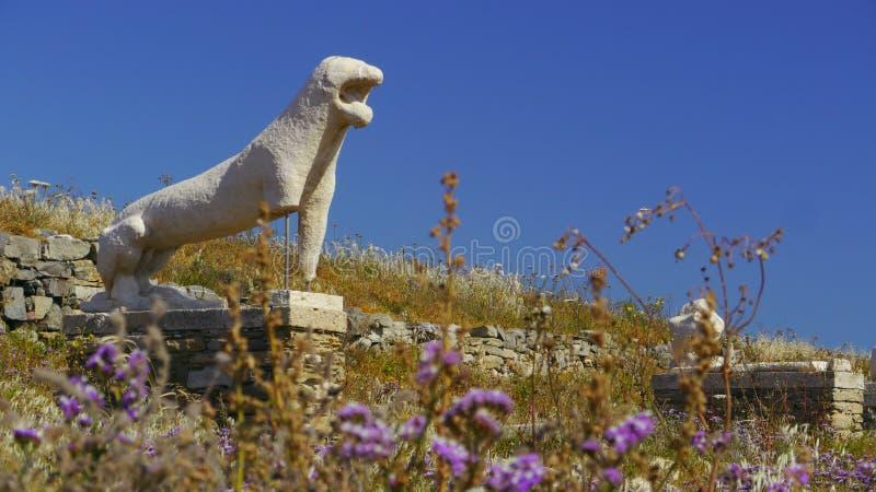 Лев Delos стоковое фото rf