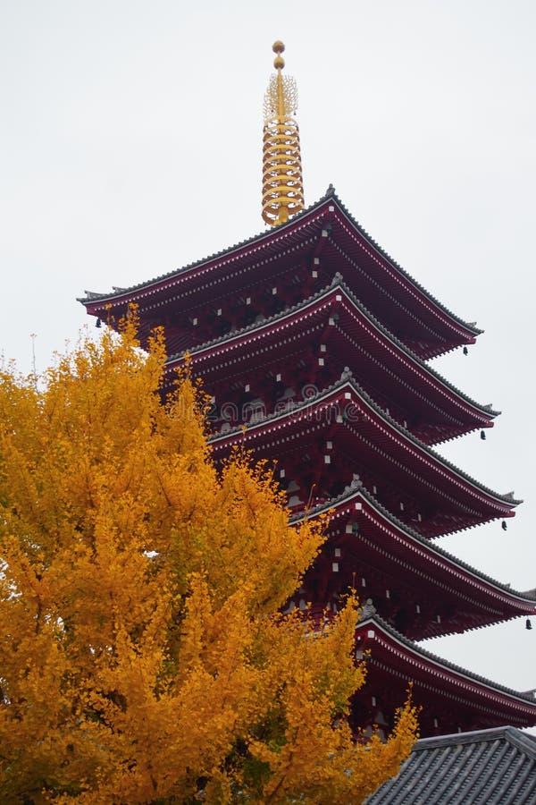 Легендарная пагода 5 в Sensoji Asakusa, токио стоковые фотографии rf