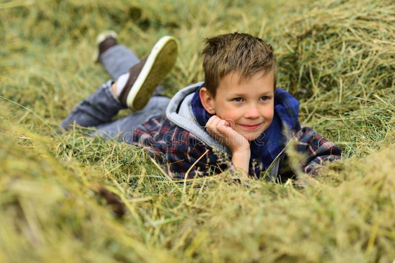 легко ослабьте взятие Небольшой ребенк ослабить в сене Небольшой ребенк daydreaming в амбаре фермы Ослабьте весь день стоковое фото rf